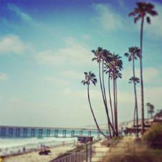 Scripps Pier La Jolla, CA San Diego Living, La Jolla, America, City, Beach, Water, Fun, Outdoor, Water Water