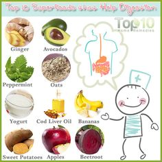 Top 10 Superfoods that Help Digestion