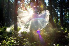 Wonderland : Wild Thing   Flickr - Photo Sharing!