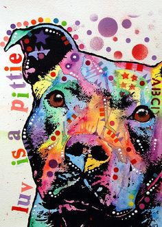 Thoughtful Pitbull Luv Is A Pittie Print by Dean Russo