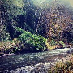 Lyre river