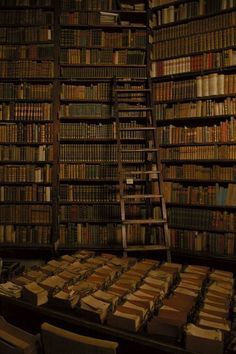 """""""My goal in life is not fame or fortune. It is simply to one day own a library with a ladder."""""""