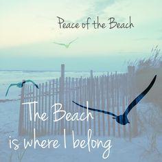 The beach is where I belong Beach Bum, Ocean Beach, Seaside Decor, Beach Quotes, Beach Sayings, I Love The Beach, Sand And Water, Am Meer, Beach Cottages