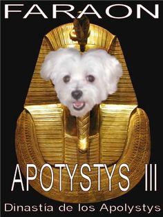 Poli - Apotystis III, el Faraón de Micerino