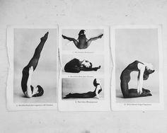 the art of flexibility