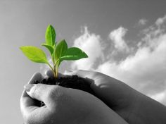 Comunicare con il web e i social network per vincere le sfide della sostenibilità e della solidarietà  – 17-18 novembre 2012 – La Costigliola – Rovolon (PD)