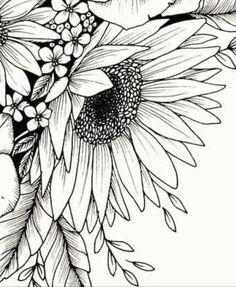Doodle Art For Beginners, Animal Skeletons, Mandala Art Lesson, Free Adult Coloring Pages, Flower Sketches, Black White Art, Sgraffito, Pencil Art Drawings, Pen Art