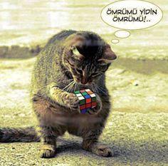 Ömrümü yedin :))))