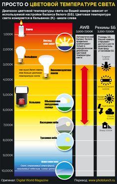 Инфографика: баланс белого и цветовая температура света