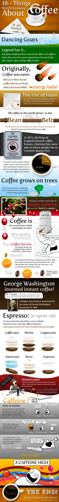 15 Things Worth Knowing About Coffee :) - knowyourgrinder.com #coffee #homemade #coffeegrinders #infographics