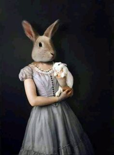 Alice and the white rabbit revisited, wonderland
