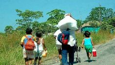 Denuncian ante la OEA irregularidades en proceso de restitución de tierras