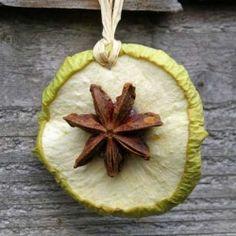 apple slice - star anise ornaments