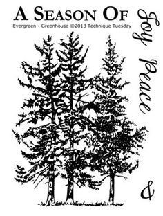 Technique Tuesday - Clear Stamp - Greenhouse Society - Evergreen