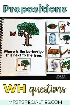 Bug and Insects Interactive Books (Adapted Books for Special Education) Life Skills Lessons, Teaching Life Skills, Preschool Special Education, Autism Activities, Autism Resources, Sorting Activities, Autism Classroom, Classroom Setup, Interactive Books