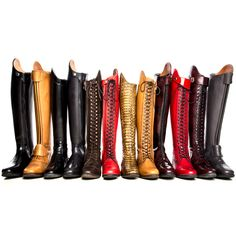RIDERSxoxo will be at the BRISBANE CDI, for Celeris Boot Fittings at our Trade Stand. If you would like to make a Appointment for a Fitting of these Gorgeous Made To Measure Boots, BOOK NOW: 07 3206 3952   www.ridersxoxo.com Appointments will be Limited, so please book your Appointment in Advance. We will also have a AMAZING selection of Horse/Rider Equipment with some new exciting products, so be sure to come visit our Stand near the Arena Entrance. Looking Forward To Seeing You All