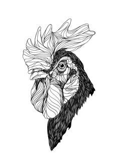 Animals by Bryan Gallardo via Behance Chicken Tattoo, Chicken Drawing, Rooster Logo, Rooster Art, Animal Cartoon Video, Black Chickens, Bird Artwork, Dark Tattoo, Animal Sketches