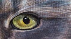 How to paint realistic Cats Eyes,#3