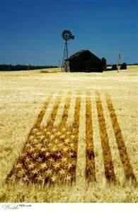 Amber waves of grain.. GOD BLESS AMERICA....