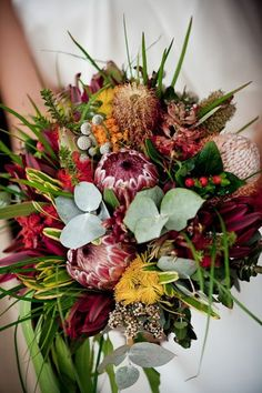 Guest Post: Flowers With Native Appeal