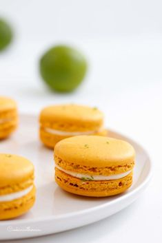 Meine Macarons im Amateur Macaroon Contest von Nantes 2018 - Angelika Fuchs Bon Dessert, Dessert Aux Fruits, Desserts Fruits, Macarons, French Food, Diet Tips, Biscuits, Food And Drink, Cookies