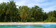 Cook Islands Cook Islands, Costa Rica, Around The Worlds, San Jose, Beach, Water, Outdoor Decor, Travel, Gripe Water