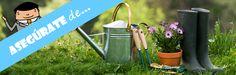 Aprender cómo cuidar las plantas en casa -@SegPlusUltra