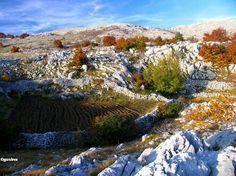 Svilaja, mountain