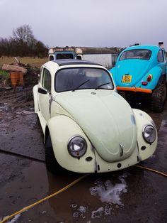 eBay: Volkswagen Beetle project 1971 cal look,ragtop rolling project #vwbeetle #vwbug #vw
