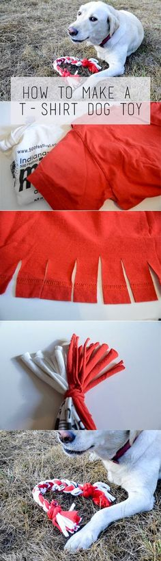Easy Dog Toy Ideas | Easy T-Shirt Dog Toy by DIY Ready at http://diyready.com/diy-dog-crafts-mans-best-friend-will-love/