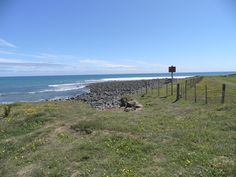 Stent Road, Warea. Officially, it is Coast Road at this point.
