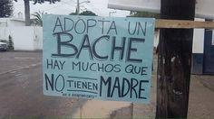 """Mejor #adopta un bache, porque hay muchos """"hombres"""" perdón #machos que no tienen #madre"""