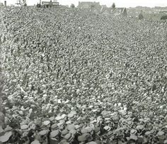 Arsenal crowd at Highbury in the 1920s...wow, that is a LOOOOOOOT of folks.