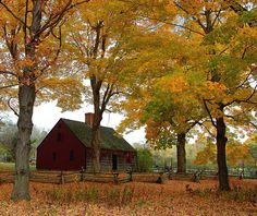old barn in fall, would look real nice if it was finished in this dark red color Farm Barn, Old Farm, Country Barns, Country Roads, Country Living, Country Scenes, Down On The Farm, Red Barns, Covered Bridges
