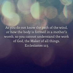 Ecc 11:5 I don't understand your ways and your plans. But I will choose to trust in you for you are forever faithful.