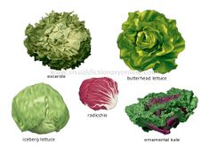Leaf Vegetables (commonly found in salads)