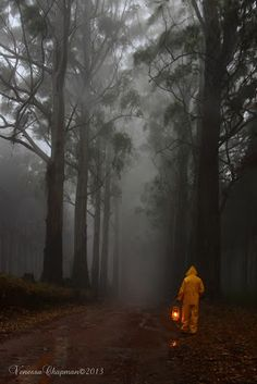 I took this photo one very cold, wet, misty morning in Magoebaskloof, South Africa. What a beautiful part of our country. Our Country, No Way, Africa, Cold, Creative, Outdoor, Beautiful, Outdoors, Outdoor Games