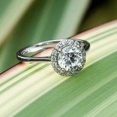 White Gold Halo Diamond Ring