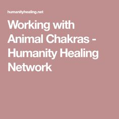 Working with Animal Chakras - Humanity Healing Network