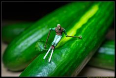 The Cucumber Slalom | Flickr - Photo Sharing!