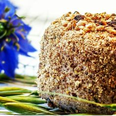 Faumage (fromage vegan) à la lévaline et aux noix de Clémentine www.amandebasilic.com