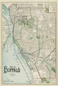 138 Best Buffalove images