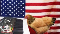 Jokgu the Musical Chicken Pecks Out a Patriotic Cover of The Star Spangled Banner on a Keyboard