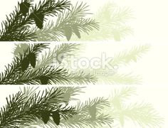 Horizontal banner of spruce branch. Royalty Free Stock Vector Art Illustration
