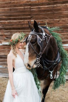 Christmas Bridal Shoot with a Clydesdale Horse