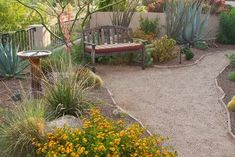 Phoenix Landscape Design Ideas, Pictures, Remodel and Decor- under the trees #DesertLandscape