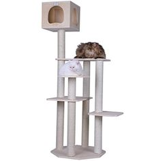 Cat Tree Scratching Post made of real wood, with 5 different levels * Want additional info? Click on the image. #CatScratchersandFurniture