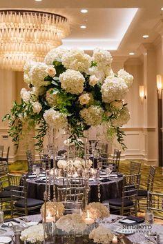white flower arrangements pinterst | Tall white floral centerpieces. Raleigh, NC weddings. | Wedding ...