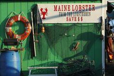 Lobster #JoesCrabShack #JoesMaineEvent