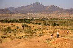 Diverse Landscape in Uganda - TOP things to do in Uganda